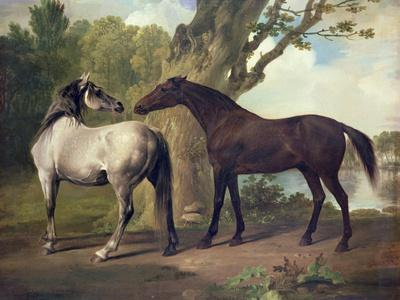 Two Horses in a Landscape