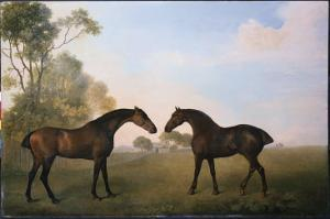 Two Hunters Out at Grass by George Stubbs
