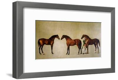 Whistlejacket and Two Other Stallions with Simon Cobb, the Groom, 1762