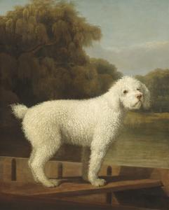 White Poodle in a Punt, 1780 by George Stubbs