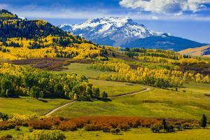 USA, Colorado, fall colors, vista by George Theodore