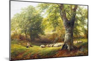 Sunshine in the Country by George Turner