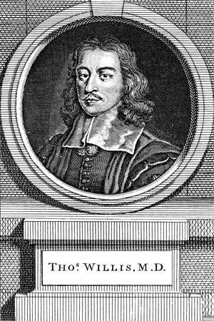 Thomas Willis, 17th Century English Physician, 1742