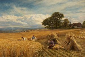 A Surrey Cornfield, 1864 by George Vicat Cole