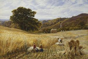 Harvest Time Near Holmbury Hill, Surrey, 1865 by George Vicat Cole
