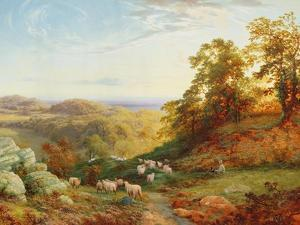 The Young Shepherd by George Vicat Cole