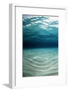 Sandy Sea Floor by Georgette Douwma