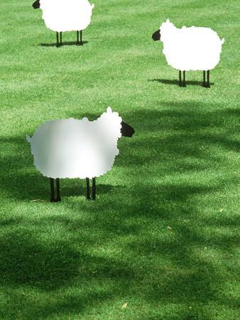 Sheep on Lawn as Decoration, Perfect Striped Lawn