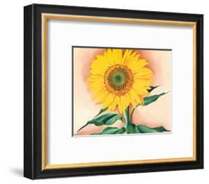 A Sunflower from Maggie, 1937 by Georgia O'Keeffe