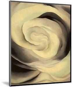 Abstraction White Rose, 1927 by Georgia O'Keeffe