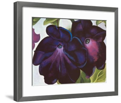 Black and Purple Petunia, 1925