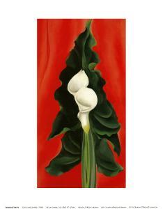 Calla Lilies on Red, 1928 by Georgia O'Keeffe