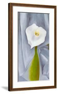 Calla Lilly On Grey by Georgia O'Keeffe