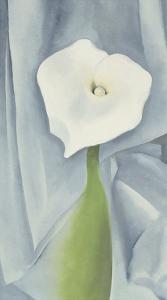 Calla Lily on Grey, 1928 by Georgia O'Keeffe