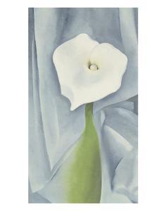 Calla Lily on Grey, c.1928 by Georgia O'Keeffe
