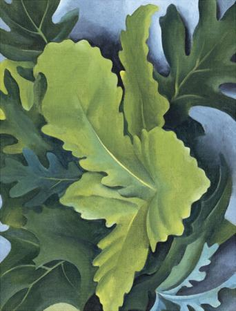 Green Oak Leaves, c.1923