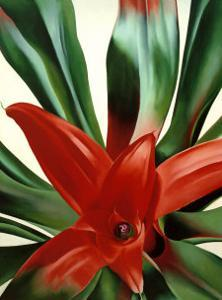 Leaves of a Plant by Georgia O'Keeffe