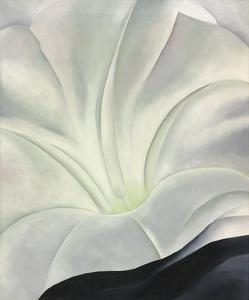 Morning Glory with Black, 1926 by Georgia O'Keeffe