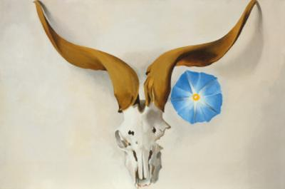 Ram's Head, Blue Morning Glory