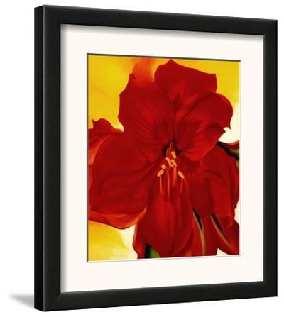 Red Amaryllis, 1937 by Georgia O'Keeffe