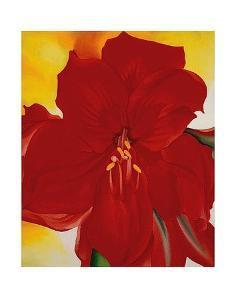 Red Amaryllis, c.1937 by Georgia O'Keeffe