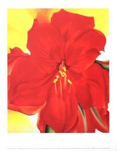 Red Amaryllis by Georgia O'Keeffe