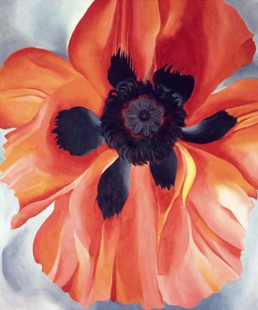 Red Poppy, No. VI, 1928
