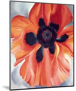 Red Poppy, No. VI, 1928 by Georgia O'Keeffe