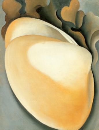 Tan Clam Shell