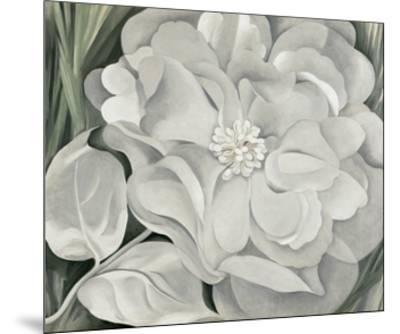 The White Calico Flower, c.1931