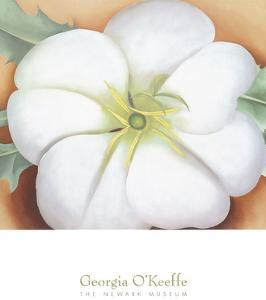 White Flower on Red Earth, No. 1, c.1946 by Georgia O'Keeffe