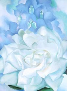 White Rose W/ Lakspur No.2 by Georgia O'Keeffe