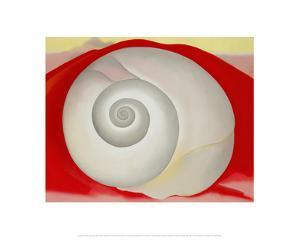 White Shell with Red, 1938 by Georgia O'Keeffe