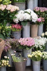 Spring Flowers Including Lilacs, Hydrangea, Ranunculus and Roses by Georgianna Lane