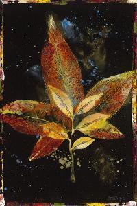 Botany Pride II by Georgie