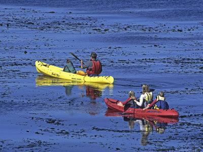 Family Exploring the Monterey Bay, California, USA