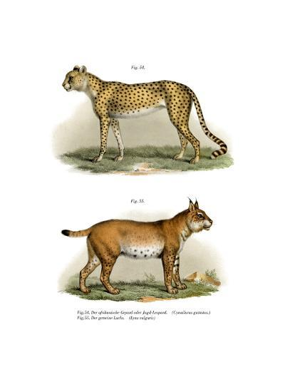 Gepard, 1860--Giclee Print