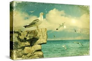 Seagulls In The Sky.Vintage Nature Seascape Background by GeraKTV
