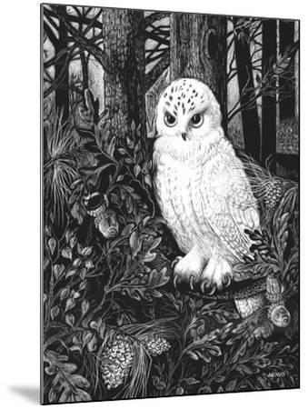 Owl by Geraldine Aikman