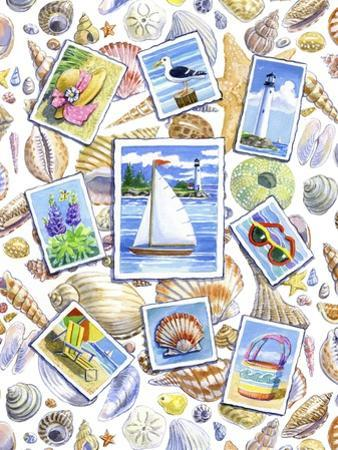 Postcards And Shells by Geraldine Aikman