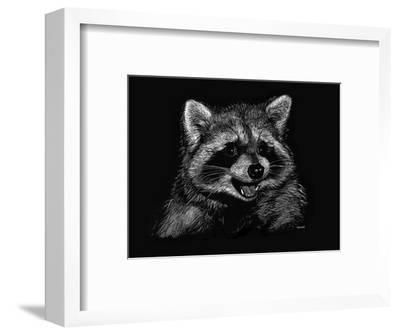 Racoon by Geraldine Aikman