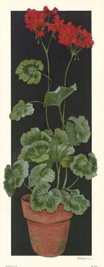 Geranium II-Judy Phipps-Art Print