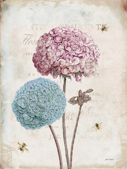 Geranium Study II Pink Flower-Katie Pertiet-Art Print