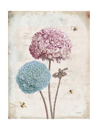 https://imgc.artprintimages.com/img/print/geranium-study-ii-pink-flower_u-l-q1b07xc0.jpg?p=0