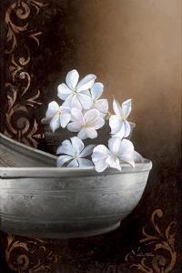 Jasmine Bowl by Gerard Beauvoir