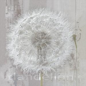 Silver Parachute by Gerard Beauvoir