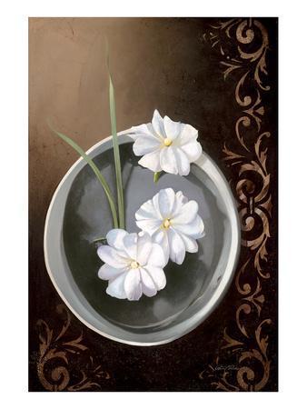 White Jasmine