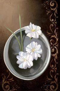 White Jasmine by Gerard Beauvoir
