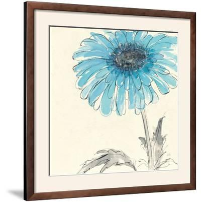 Gerbera Blue II-Chris Paschke-Framed Photographic Print