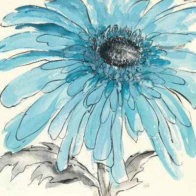 Gerbera Blue III-Chris Paschke-Art Print
